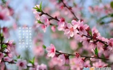 春季装修的好处知多少?